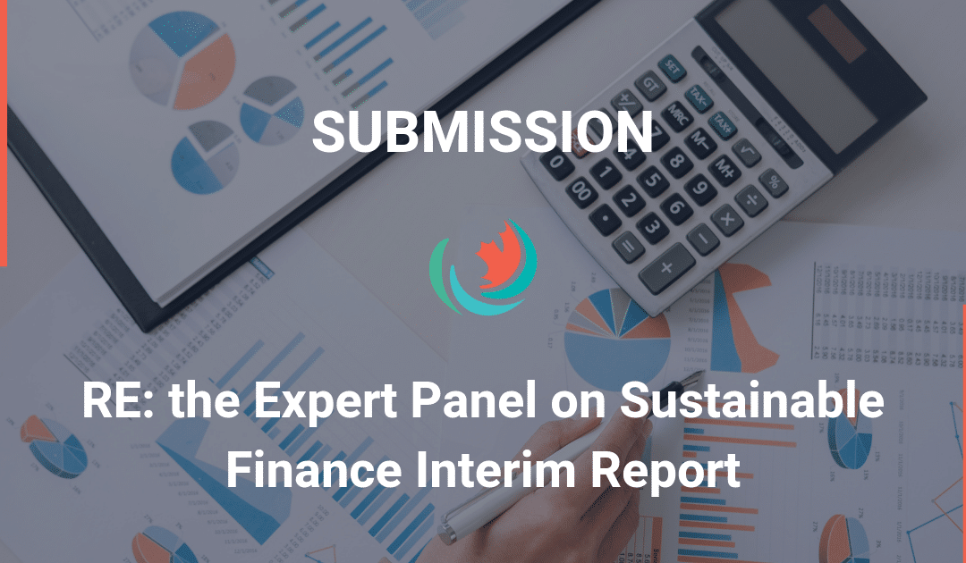 Comments on the Expert Panel on Sustainable Finance Interim Report