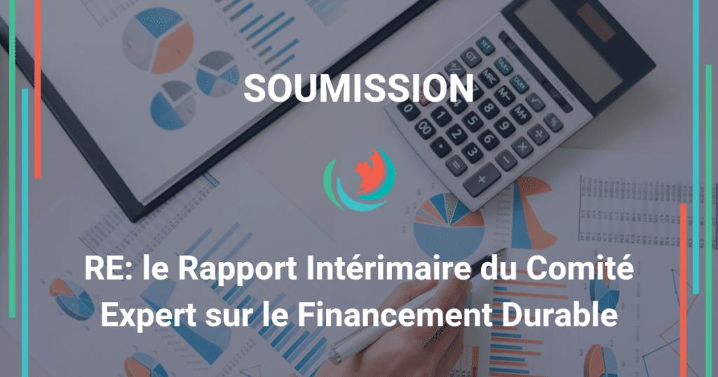 Commentaires sur le rapport intérimaire du comité expert sur la finance durable