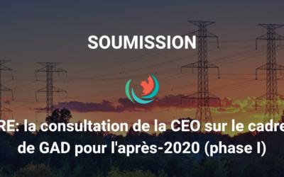 Soumission conjointe à la consultation de la CEO sur le cadre de GAD pour après-2020 (phase I)