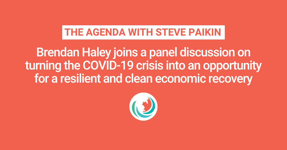 The Agenda: Economic Stimulus with Renewable Energy?