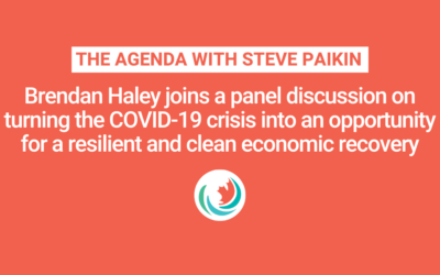 The Agenda: Economic Stimulus with Renewable Energy?