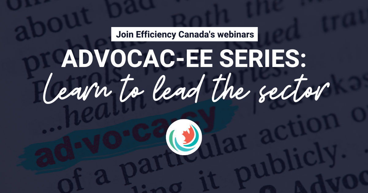 Advocac-EE series: Learn to lead the sector