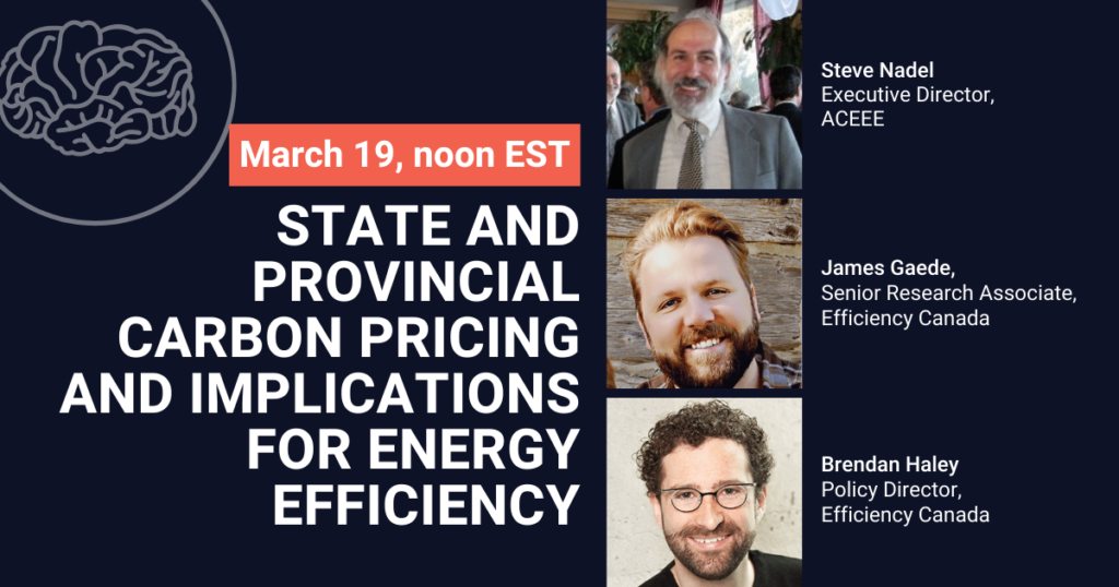 State and provincial carbon pricing and implications for energy efficiency